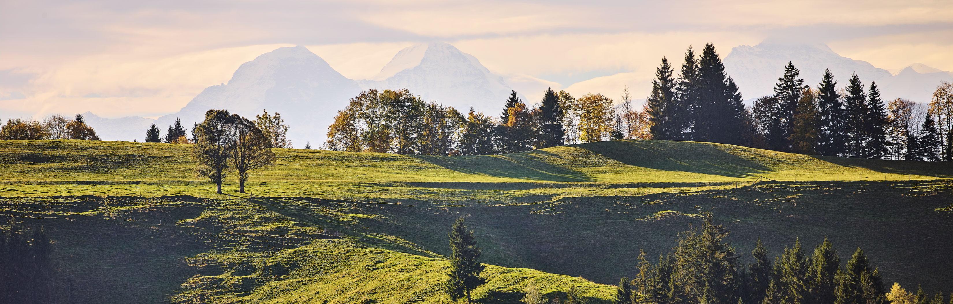 kambly-landschaft-Ein-Beitrag-zur-Lebensqualitaet